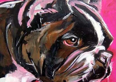 Boston Terrier Two